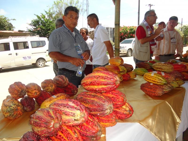 Arrancaron las Fiestas Patronales de Arauquita